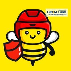 小蜜蜂 全年综合意外保险