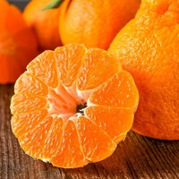 维乐季 丑柑不知火丑柑大果 果径80mm以上 净重5斤