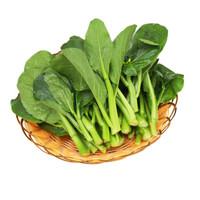 绿农说 菜心苗 约300g  火锅食材 新鲜蔬菜 *17件