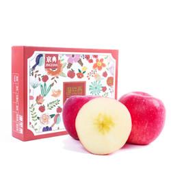 潘苹果 京典礼盒 特级静宁富士苹果 12粒 单果235g-265g 净重6斤 新鲜水果+凑单品 *2件+凑单品