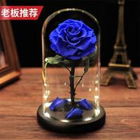 创意生日礼物 永生花真花玻璃罩礼盒 【蓝色妖姬】 适合做生日礼物送爱人