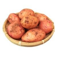 水果蔬菜 云南红皮黄心小土豆 4.75kg(带箱)