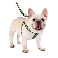 狗狗牵引绳   S码(8-15斤)