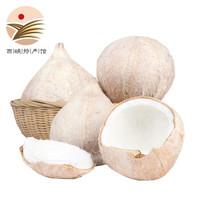 静益乐源 椰皇椰白 8个装 单个约1.3斤