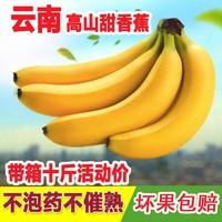 香蕉云南新鲜水果 非广西芭蕉小米蕉苹果蕉红皮粉皇帝蕉10斤包邮