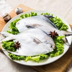 大洋世家 舟山鲳鱼 1000g/袋(8-10条) *3件