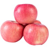 山西运城红富士苹果 甜美多汁 新鲜水果 2.9斤