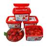 【顺丰正常发货】丹东冰冻草莓 单个450g/盒 冷冻冰冻红颜99草莓冻罐头新鲜果蔬 4罐