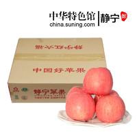 静宁馆 红六福 特产水果 红富士苹果 65#—70#小果箱装 新鲜苹果 西北