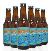 拾捌精酿跳东湖IPA 一场烈日之下 年轻人的狂欢十八号酒馆 国产精酿IPA精酿啤酒 6瓶装跳东湖IPA
