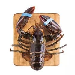 味库 加拿大进口鲜活 波斯顿龙虾 650-750g *2件