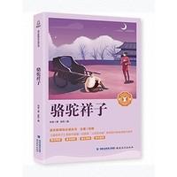 《骆驼祥子》老舍原著名著书籍