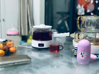 生活元素 I90煮茶器 简单开箱及使用