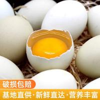 绿壳鸡蛋20枚新鲜柴鸡蛋笨鸡蛋破损包赔