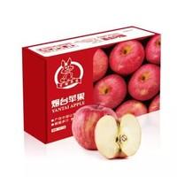 京觅 烟台红富士苹果 12个 净重2.1kg*6件 + 攀枝花 米易枇杷9粒装270g*3件