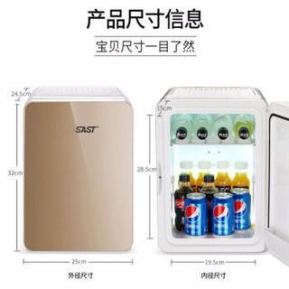 SAST 先科 PD-10 小型迷你车载冰箱