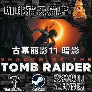 Steam PC 中文游戏 古墓丽影 11暗影
