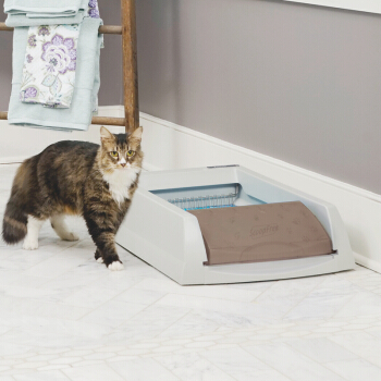 PetSafe 贝适安 ScoopFree 自洁式智能猫砂盆 经典版