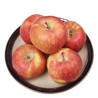 展卉 新疆阿克苏苹果 4个装 果径70-80mm