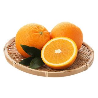 京东生鲜 南非进口橙子 单果150-220g 12粒