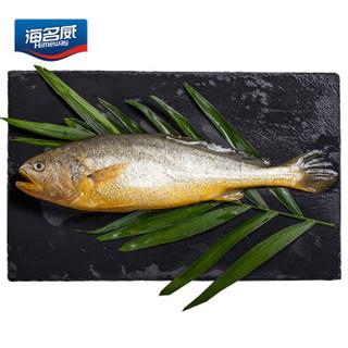 海名威 国产冷冻黄花鱼  600g