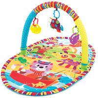 Playgro 派高乐 婴儿益智健身架