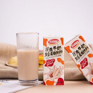 达利园 花生牛奶 复合蛋白饮料 原味 250ml*12瓶