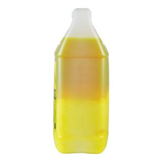 CHEMICAL GUYS 化学小子 柑橘上光洗车液 3.78L