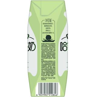 伊利 味可滋哈密瓜牛奶240ml*12