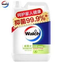 威露士(Walch)泡沫洗手液 青柠盈润 5L 有效抑菌99.9% *2件