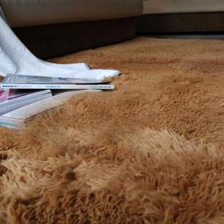 QW 青苇 加柔 高毛丝绒 客厅地毯 驼色