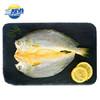 SAN DU GANG 三都港 冷冻香煎黄鱼鲞 175g 1条 袋装