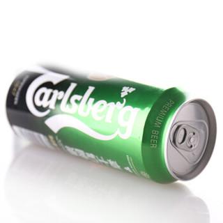 Carlsberg 嘉士伯 啤酒 500ml*24听