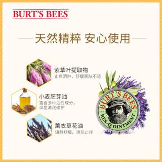 BURT'S BEES 小蜜蜂  神奇万用紫草膏