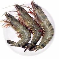 品鲜猫 越南活冻黑虎虾 850g 20-24只 *2件