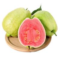 水果蔬菜 广西 红心芭乐 2.5kg