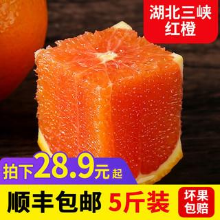 农存(食品)血橙5斤 60-65mm