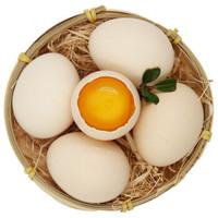 晋村 农家土鸡蛋 20枚 *2件