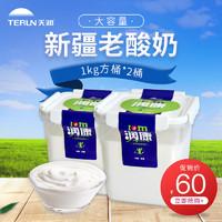 terun天润新疆低温润康方桶老酸奶风味家庭装 1KG*2桶