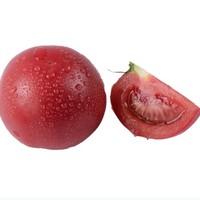佑嘉木 生态西红柿 2.5kg