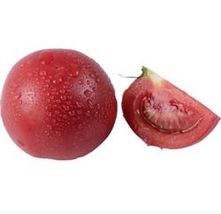 佑嘉木  普罗旺斯沙瓤西红柿 净重5斤 *4件