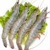 谷源道 厄瓜多尔 白虾 1.4kg