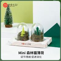 好命天生Mini森林猫薄荷 猫草猫咪猫零食 高品质排除毛球清洁口腔 *2件