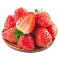 静益乐源 草莓 2.5kg
