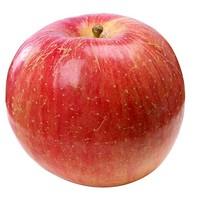 xinanzhuang 辛安庄 红富士冰糖心丑苹果 5斤 *2件