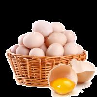 中原老家乡  鲜鸡蛋土鸡蛋 40枚