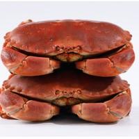 YOFRESH 面包蟹熟冻进口黄金蟹 1000-800g *3件