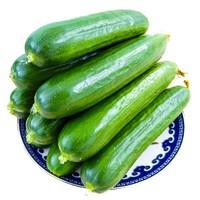 芬果时光 荷兰瓜小黄瓜 净重5斤