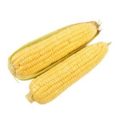 甘福园 云南 金银水果甜玉米 3斤