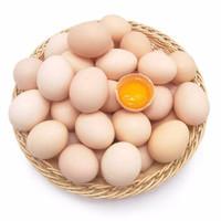 静益乐源 散养土鸡蛋 40枚